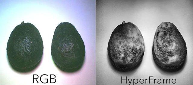 Normal camera vs. hyperspectral frame