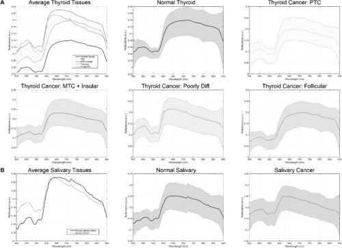 spectral signatures tumor detection