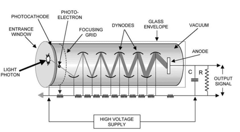 Light Detectors: Photomultiplier Tube